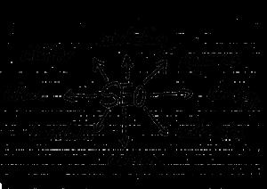 search-engine-optimization-1359430_1280